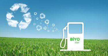 biyodizel yakıt üretimi