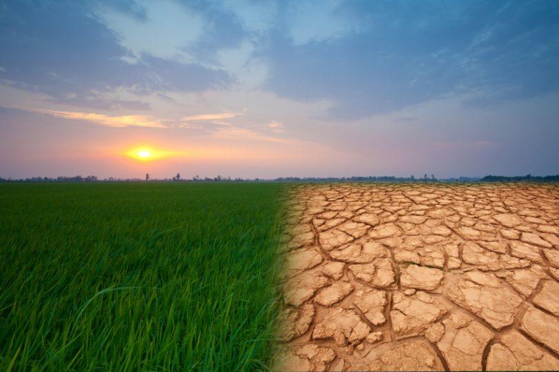 iklim değişikliği dünyayı nasıl etkiliyor
