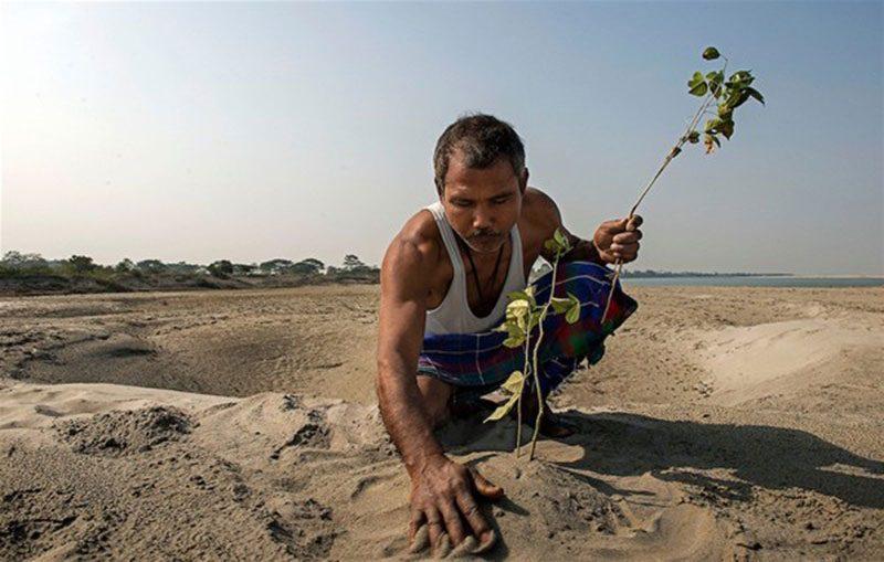 tek başına mucizeyi yaratan adam jadav payeng hindistan
