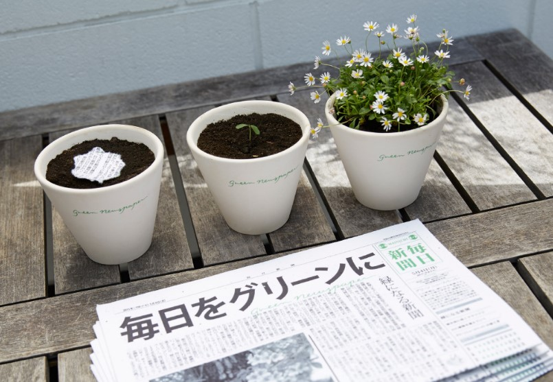bitkiye dönüşen gazete
