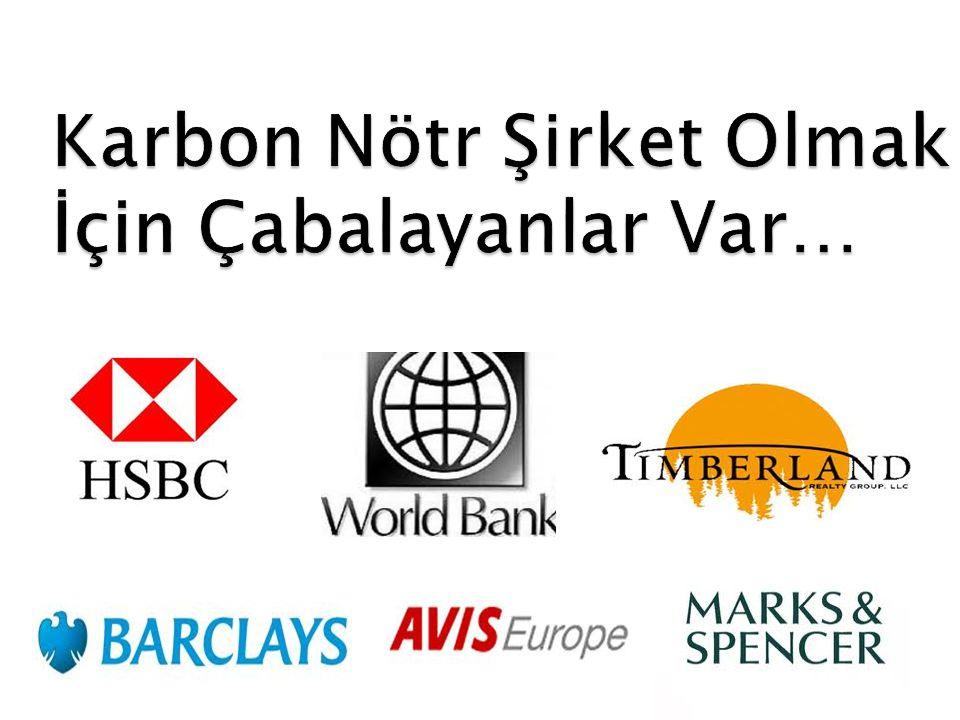 sıfır karbon şirketler