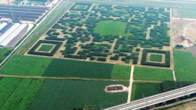 qr code china