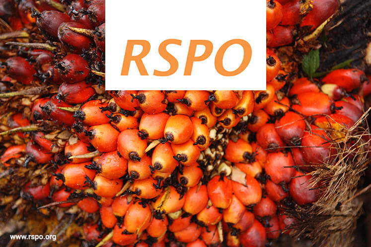 rspo roundtable sustainable palm oil