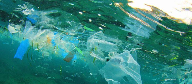 okyanus mikroplastik