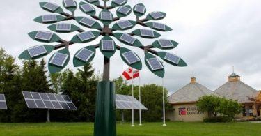 güneş enerjisi ağaç