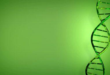 yeşil tasarım