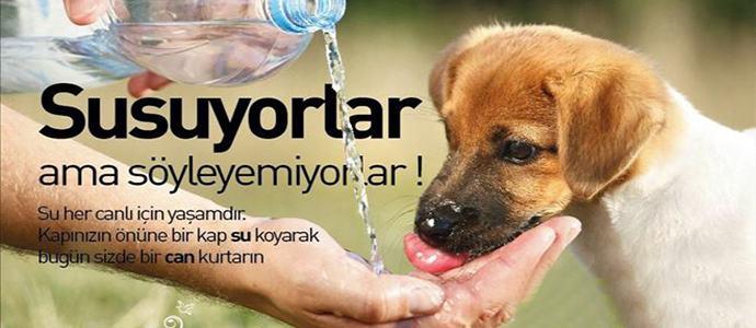 bir kap su