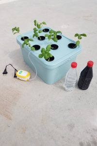 ev tipi topraksız tarım seti